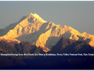 Kolakham, Red Panda Eco Retreat, Neora Valley National Park. - Chhattisgarh vacation rentals
