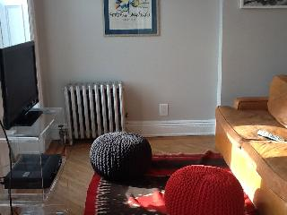 Trendy, spacious one-bedroom in Brooklyn - Brooklyn vacation rentals