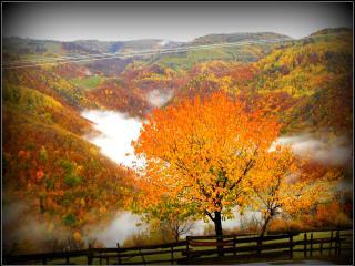 Casa Roger in Transylvania - Sebes vacation rentals