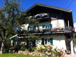 Private Apartment in ski area Austria - Saalfelden am Steinernen Meer vacation rentals