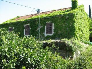 apartman arfulin - Southern Dalmatia Islands vacation rentals