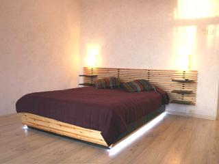 Spacy  apartment  near Moscow State University - Moscow vacation rentals