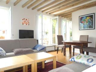 Marais top roof terrace apartment 4 sleeps 65m2 - Paris vacation rentals