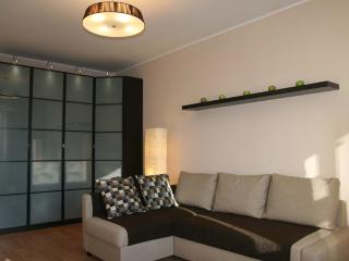 Cosy apartment close to the city center - Moscow vacation rentals