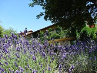 Comfortable new studio in an Italian Lavenderfarm - Savona vacation rentals
