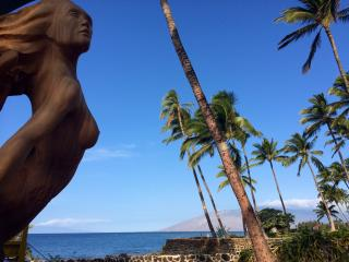 Premium views in the heart of Kihei - Kihei vacation rentals