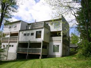 Mountainside Resort A-101 - Stowe vacation rentals