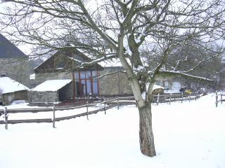 Dry Le Nou Menatje   Gîte Rural  3 épis     Dochamps  ( Manhay ) - Belgian Luxembourg vacation rentals