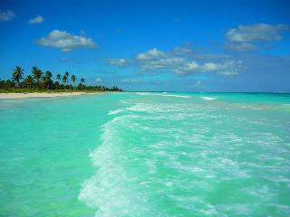 Luxurious NEW Condo-Akumal/Tulum TAO Riviera Maya - Yucatan-Mayan Riviera vacation rentals