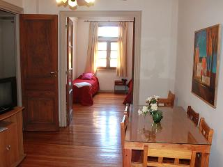 Three-bedroom apartment in downtown - San Martin and Bartolemé Mitre St. (D165CE) - Buenos Aires vacation rentals