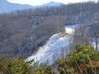 FANTASTIC MOUNTAIN TOP VIEWS*CLEAN*RELAX AT BEARADISE - Gatlinburg vacation rentals