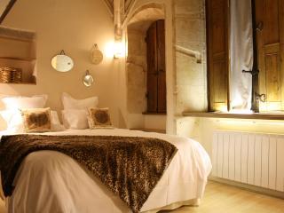 LA SUITE DU GOUVERNEUR - Old LYON - Vienne vacation rentals
