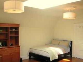Sunlit Edwardian Penthouse Alamo Square - San Francisco vacation rentals