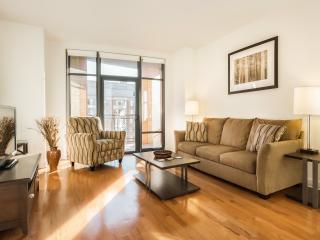 Washington DC- 2 Bedroom / 2 Bath Luxury Apartment - District of Columbia vacation rentals