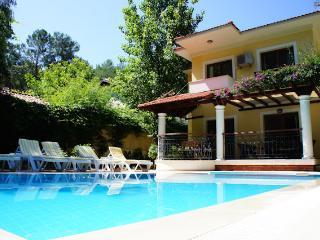 Villa Dolphin, Private Villa with pool, quite loca - Gocek vacation rentals