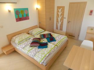 Zenja - Blue studio apartment (2 pers.) - Divaca vacation rentals