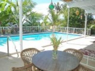 Your Own Pool With Ocean View - Kailua-Kona vacation rentals