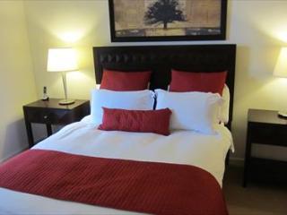 Lux 3 BR Apt at Reston Town Center - Reston vacation rentals