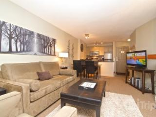Ski in Ski Out 1 Bedroom Deluxe Condo at The Aspens # 117 - British Columbia Mountains vacation rentals