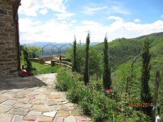 ULIVETO: your view on olive trees - Massa e Cozzile vacation rentals