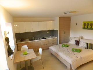 Zenja - Green studio apartment (2/4 pers.) - Sezana vacation rentals