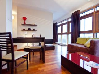 P&O Arkadia 9, next to metro and Old Town! - Warsaw vacation rentals