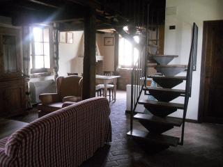 Le Felcete: Platani - San Venanzo vacation rentals