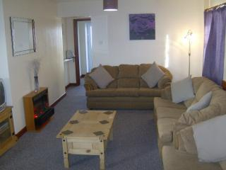Sunnyside Beautiful Brecon Beacons Wales - Llanyre vacation rentals