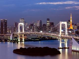 Odaiba: Tokyo Bay view Beach side condo - Minato vacation rentals