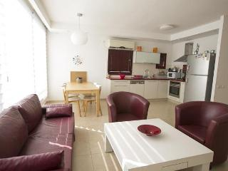 Cozy and Wide 3bd In Hot Spot North of Dizengoff - Gedera vacation rentals