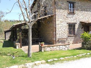 Le Felcete: Ulivi - San Venanzo vacation rentals