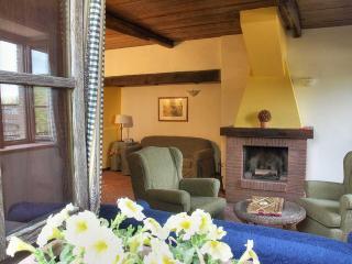 Le Felcete: Pini 2 - San Venanzo vacation rentals