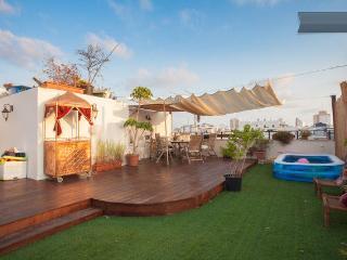 Stunning Luxurious Rooftop Duplex TLV Hilton Beach - Gedera vacation rentals