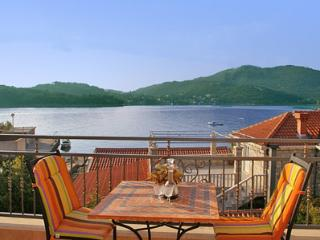Penthouse in Villa with large terazze and sea view - Zaton vacation rentals