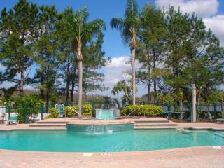 Tampa, FL - enjoy beaches & Disney - Lutz vacation rentals