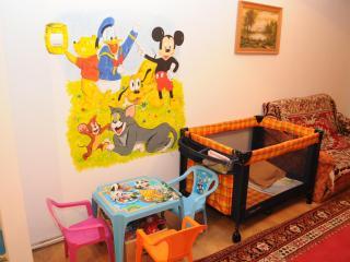 Apartment in Bacau (international airport) - Bacau vacation rentals