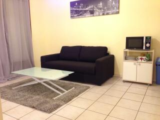 Apartment close to the airport and the city center Toulouse - Toulouse vacation rentals