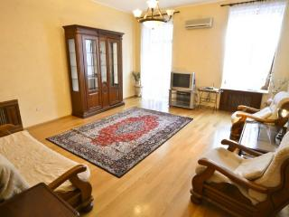 466, 9 Basseyna, Spacios, 1 block to Khreschatyk - Kiev vacation rentals