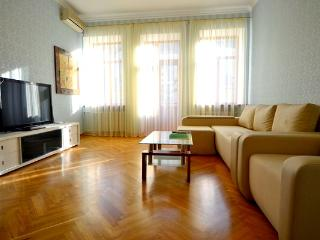 816, 20 Mala Zhitomirska, 2 bedr, close to Maydan - Ukraine vacation rentals