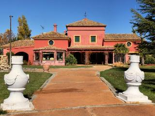 Large Villa with Pool in Andalucía Spain - Finca Oliva - Ronda vacation rentals