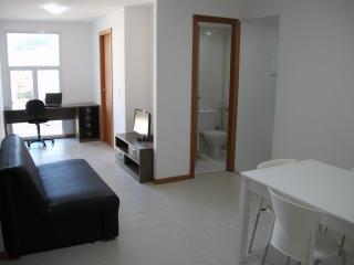 A new apartment at Lapa, the bohemian historical zone - Itanhanga vacation rentals