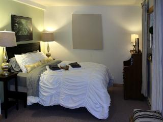 Lake Placid most affordable apartment, free  WIFI - Lake Placid vacation rentals