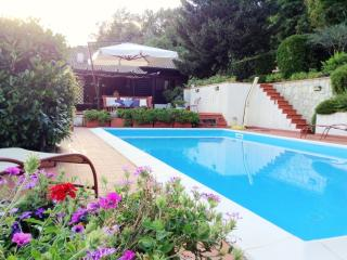 Luxury villa on the hills with pool in 5Terre Area - Lerici vacation rentals