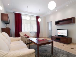 Luxury city center apartment! Niemcewicza - Poland vacation rentals