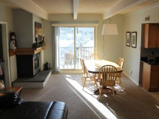 Ski and Ride - Freshly Updated - Breckenridge vacation rentals