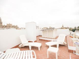 DUPLEX ATICO CATEDRAL, WIFI, DOWNTOWN - Seville vacation rentals