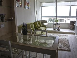 Rent Apartment in Valparaiso with a great view - Puchuncavi vacation rentals