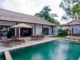 Villa Manoe Bali 3 bd - Ungasan vacation rentals