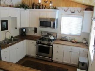Chef's kitchen with stainless steel appliances opens to living room - Remodeled Big Bear Cabin with WiFi - Sugarloaf - rentals