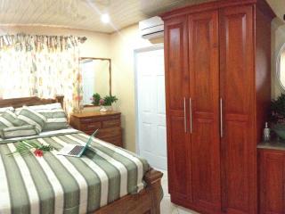 Pool side Villa with ocean views - contemporary, Caribbean comfort. - Lambeau vacation rentals